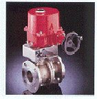 Triac Fire Safe Electric Actuated /w Manual Override A/T 2pc Stainless Steel Flanged Full Port Ball Valve.